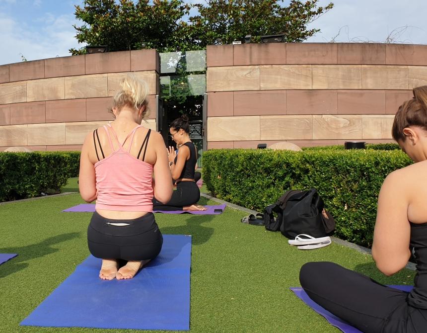 Yoga coq d'argent roof