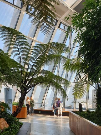 Sky Garden Yoga review