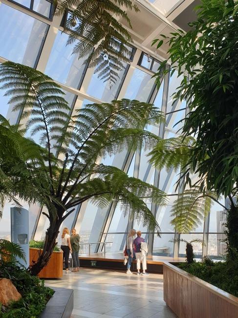Sky Garden Yoga review