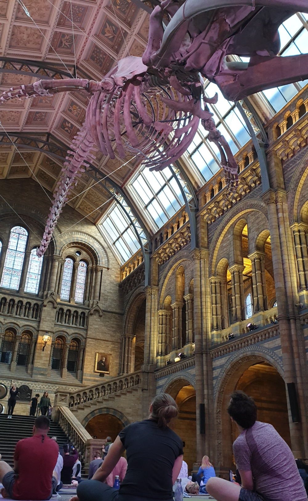 Yoga at the National History Museum London